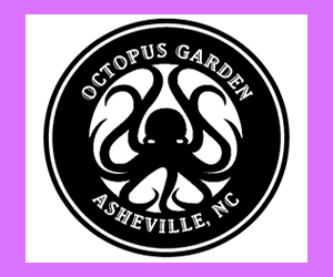 Octopus Garden Smoke Shops - 828 Business of the Day - The 828